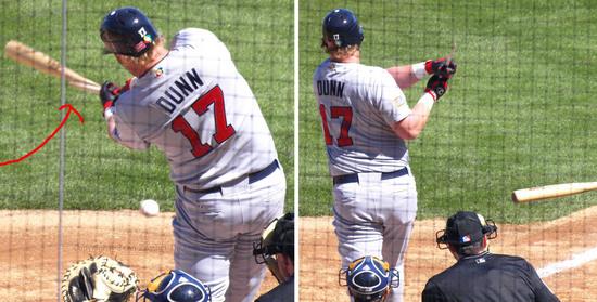 Dunn bat.jpg