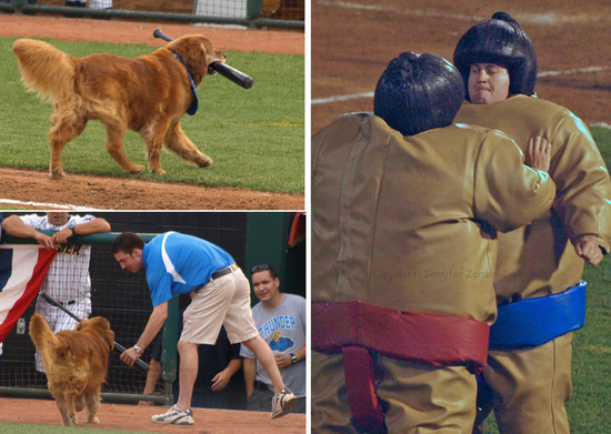 Dog and sumo.jpg