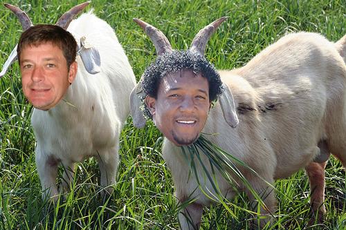 2 goats.jpg