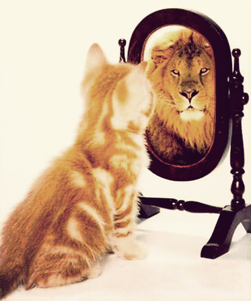 i-want-confidence.jpg