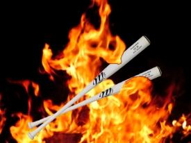 Bats on fire.jpg