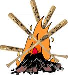 Bats bonfire.jpg