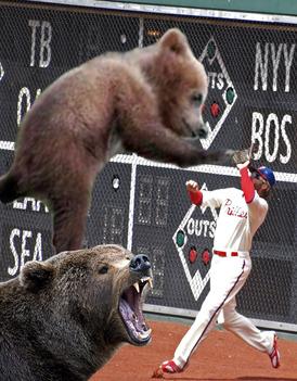 Werth_bears.jpg